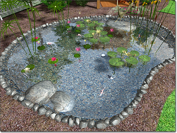 Adding a pond for Landscaping around koi pond