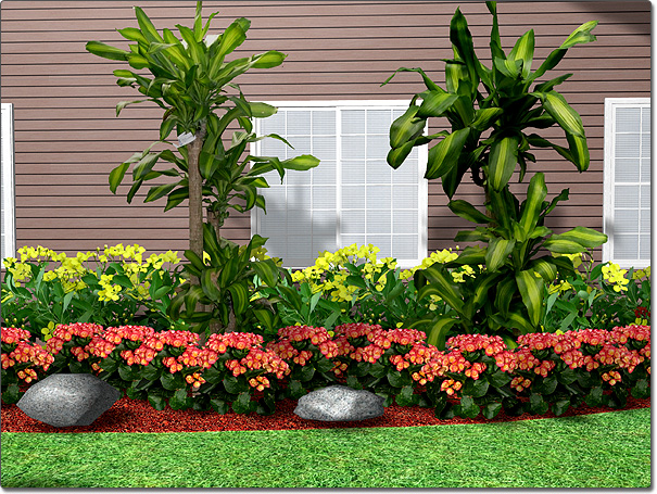 Adding a plant for Small bushes for landscaping