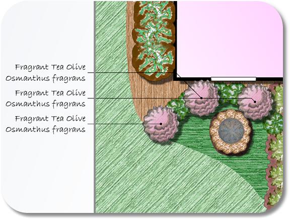 Landscape Design Software Plant Label Wizard