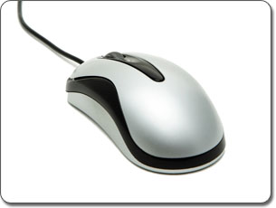 Mouse or Other Pointing Device