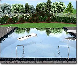 Swimming pool design software by idea spectrum realtime for Pool negative edge design